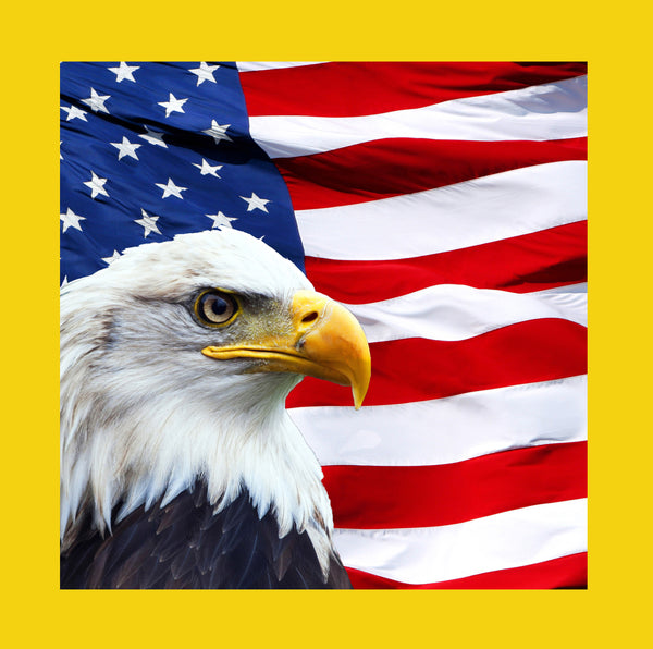 Bird Fabric, Patriotic Fabric, Eagle on a Flag with yellow border, Cotton or Fleece 1762 - Beautiful Quilt