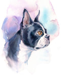 Dog Fabric, Boston Terrier Fabric 1517 - Beautiful Quilt