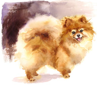 Dog Fabric, Pomeranian Fabric, Watercolor 1465 - Beautiful Quilt