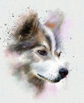 Dog Fabric, Husky Fabric Watercolor 1539-