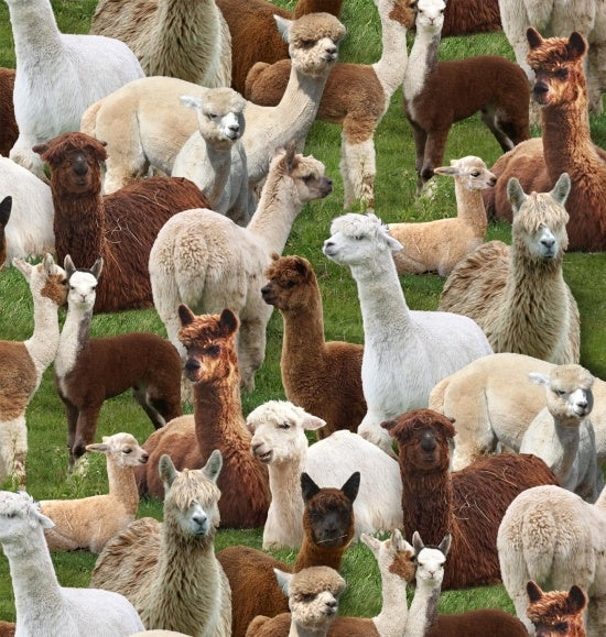 Farm Fabric Llama Fabric Farm Animals Llama in Grass 4777