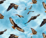 Bird Fabric Eagle Fabric North America Wildlife all over 4052