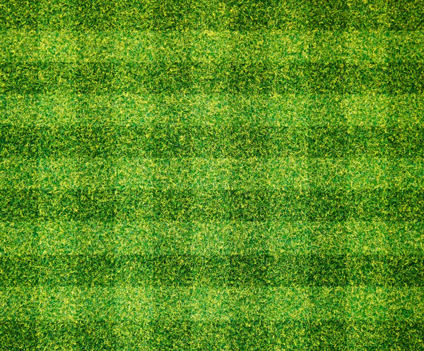 Baseball Fabric, Baseball Field Grass, Cotton or Fleece 1726 - Beautiful Quilt