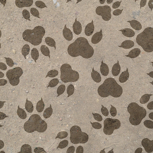 Bear Fabric, Bear Paw Fabric 1579 - Beautiful Quilt