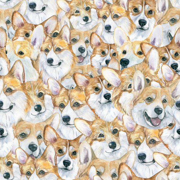 Dog Fabric, Corgi Fabric, All over 1368