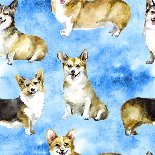 Dog Fabric, Corgi Fabric on a Sky Blue, Cotton or Fleece, 2117 - Beautiful Quilt