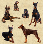 Dog Fabric, Doberman Pincher Fabric, Cotton or Fleece 2136 - Beautiful Quilt