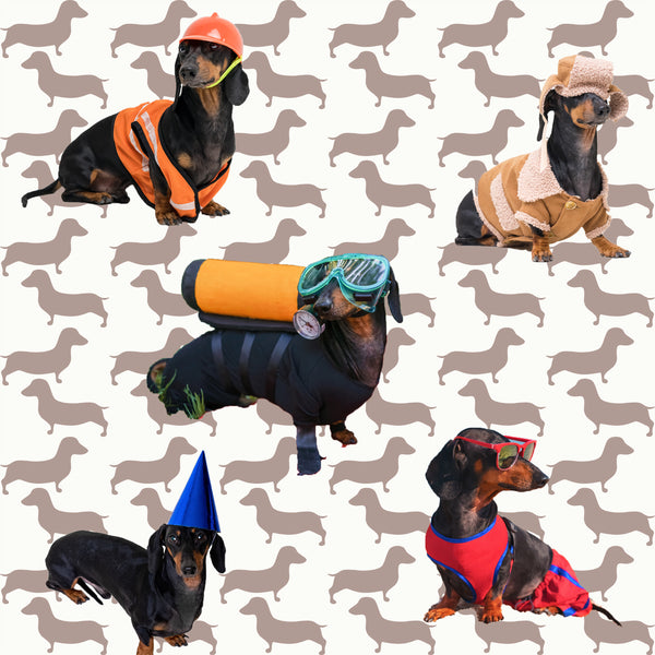 Dog Fabric, Dachshund Fabric, Doxie Fabric at Work, Cotton or Fleece 1364 - Beautiful Quilt