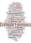 Police Fabric, Custom Print Panel, Criminal Forensic 5842 - Beautiful Quilt