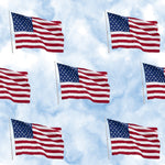 Patriotic Fabric, Flag Fabric on a Sky Blue background, Cotton or Fleece 2255 - Beautiful Quilt