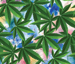 Cannabis Fabric, Marijuana Fabric on Multi Colored Background 2263