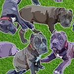 Dog Fabric, Pit Bull Fabric Grass Background seamless, Cotton or Fleece, 2085