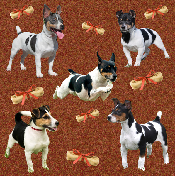 Dog Fabric, Rat Terrier Fabric with hearts, Cotton or Fleece 2139