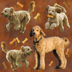 Dog Fabric, Goldendoodle Fabric on Rust with Bones, Cotton or Fleece 2132 - Beautiful Quilt