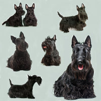Dog Fabric, Scottish Terrier on Green, Cotton or Fleece 1630 - Beautiful Quilt