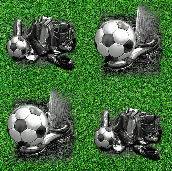 Sports Fabric, Soccer Fabric, Shoes, Ball and Equipment 1257