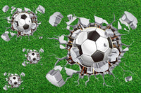 Sports Fabric, Soccer Fabric, Soccer Ball Holes 1137 - Beautiful Quilt