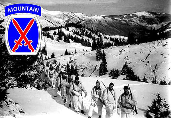 Military Fabric, 10th Mountain Division Ski Troopers 520 - Beautiful Quilt