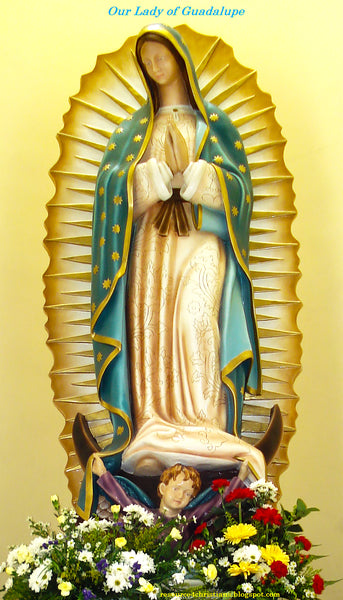 Our Lady of Fabric, Our Lady of Guadalupe 1739