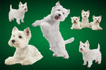 Dog Fabric, Westie Fabric on Green, Cotton or Fleece, 3785 - Beautiful Quilt