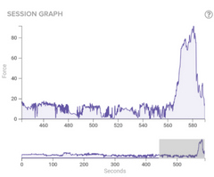Session graph - before a concussion