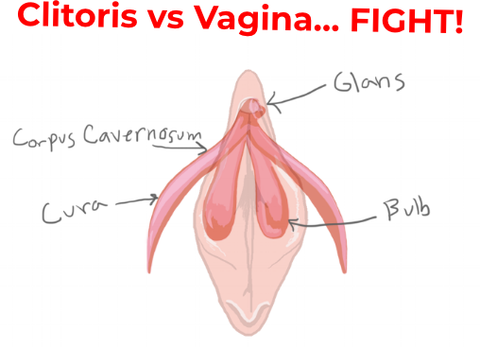 Are orgasms felt in the vagina or clitoris?