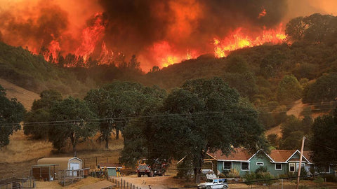 California Fires AP Photo