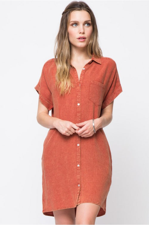 Flirt Button Down Dress