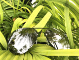 """ DA MUSE "" MIRROR Aviator Frames Women Sunglasses Reflective Lens Shadz"