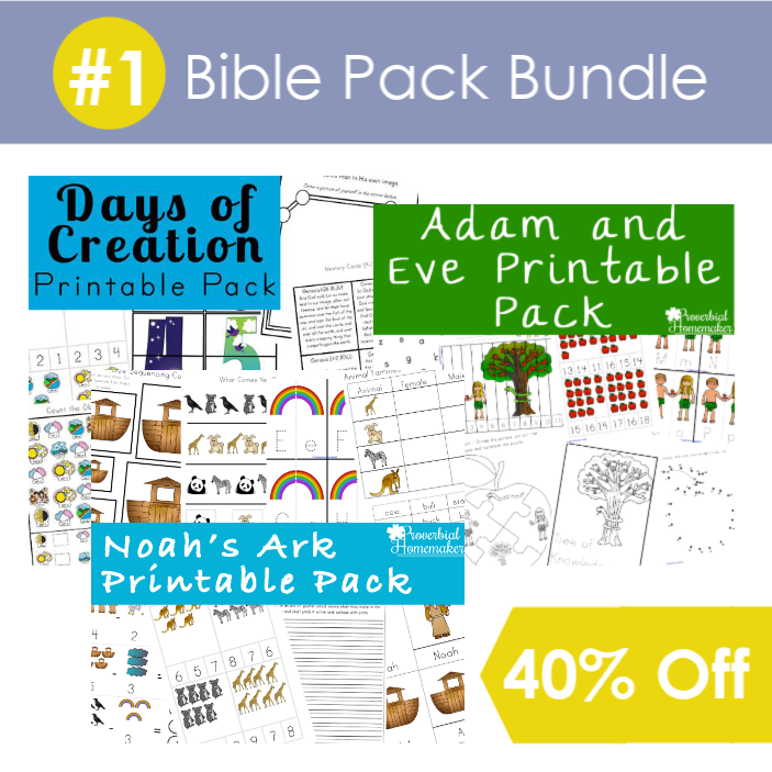 #1 Bible Pack Bundle