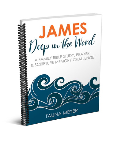 James Family Bible Study (A Whole Year)