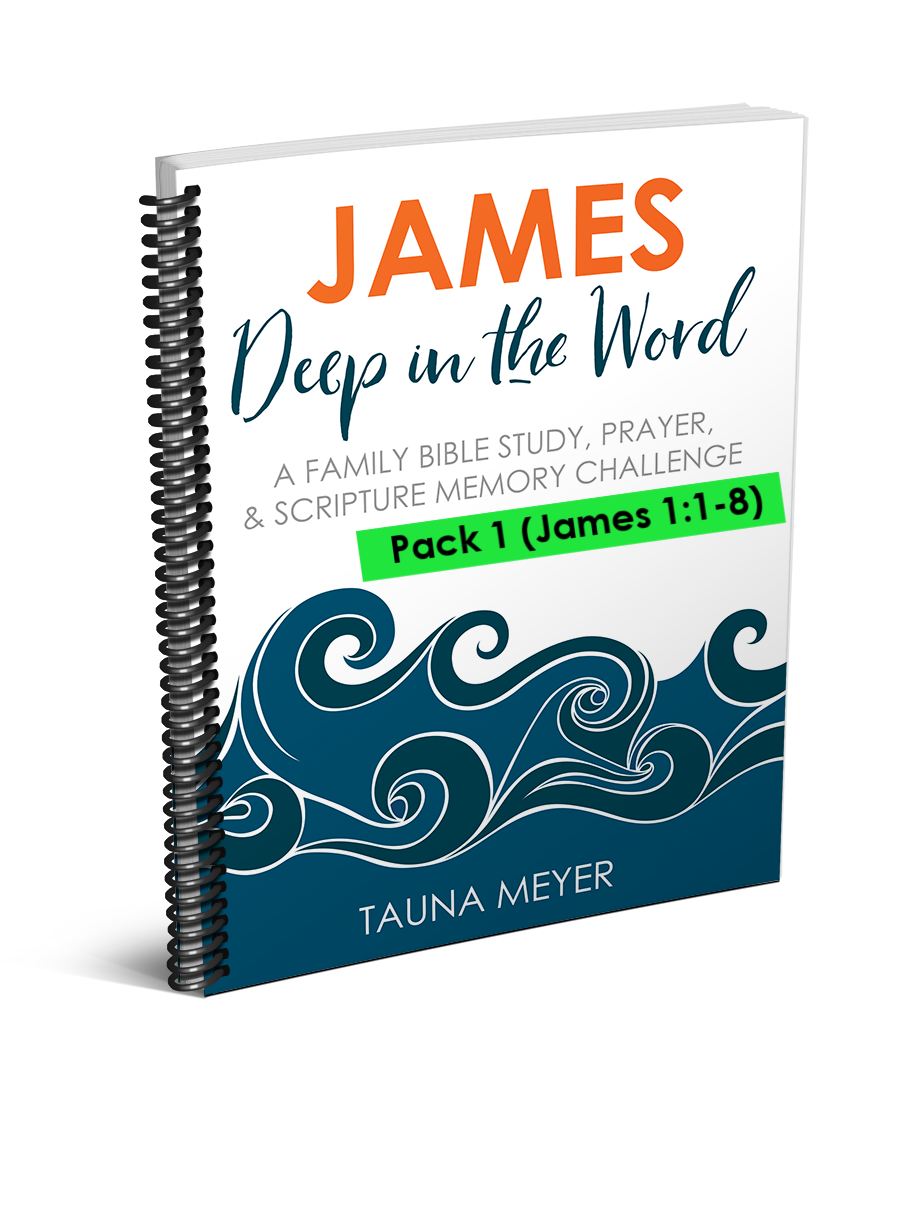 (Pack 1) James Scripture Challenge (James 1:1-8)
