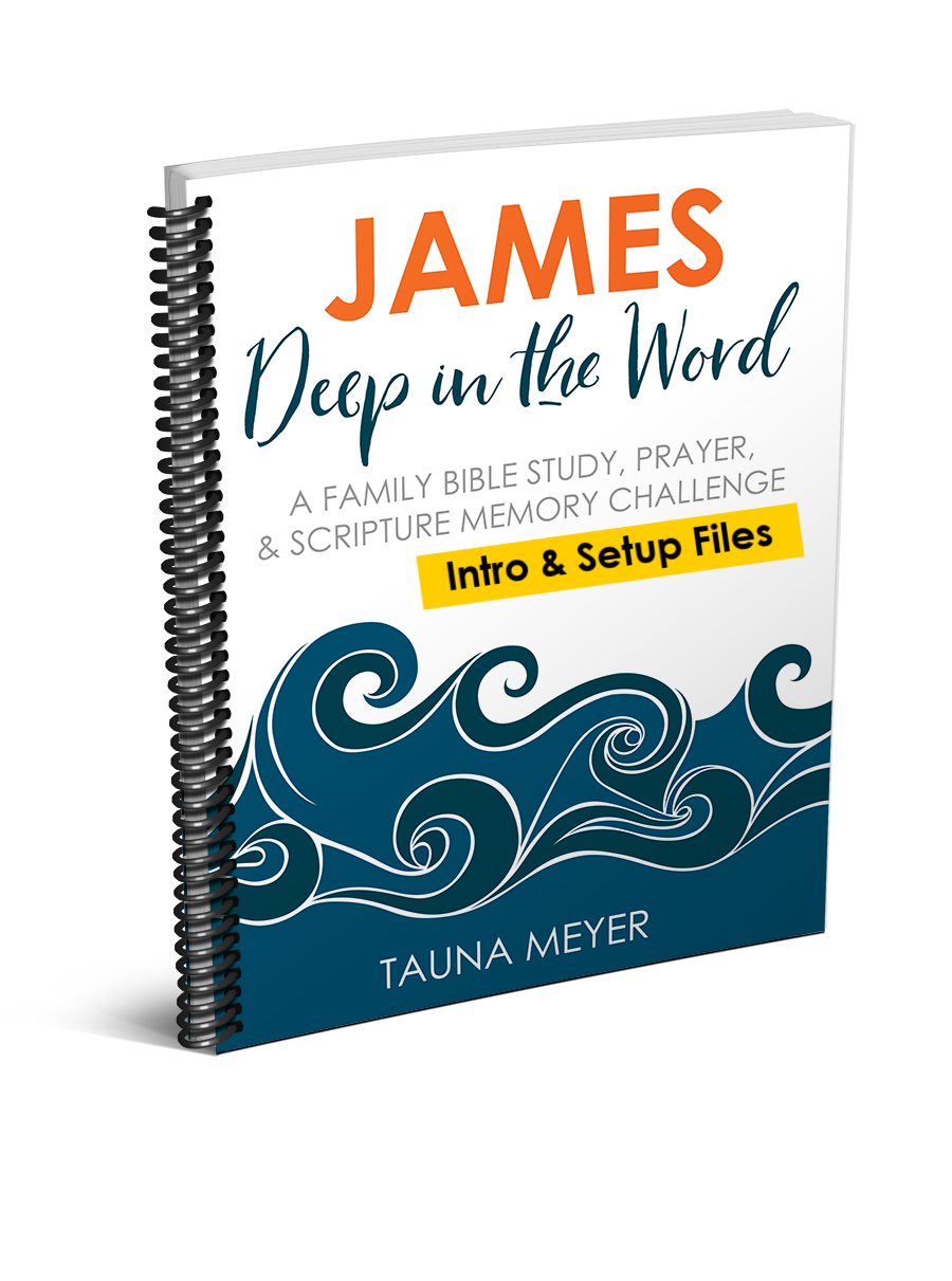 (Setup Files) James Scripture Challenge