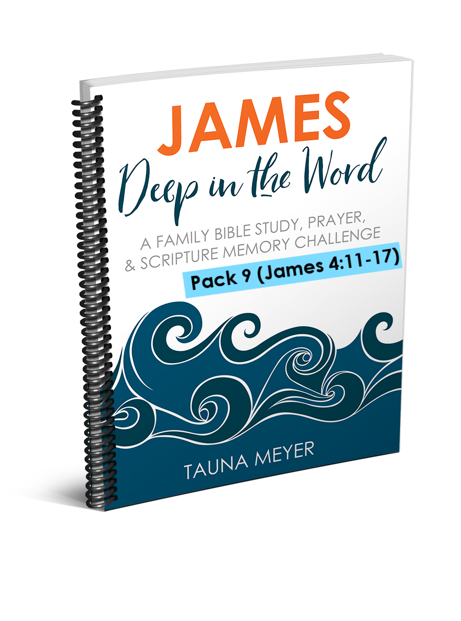 (Pack 9) James Scripture Challenge (James 4:11-17)