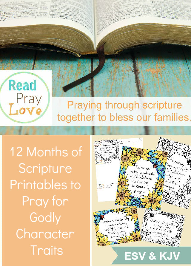Praying for Character Bundle (12 months of scripture packs)