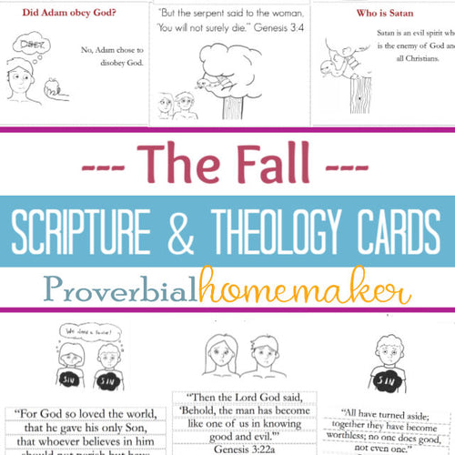 Scripture & Theology Cards: The Fall