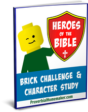 Heroes of the Bible Brick Challenge & Character Study