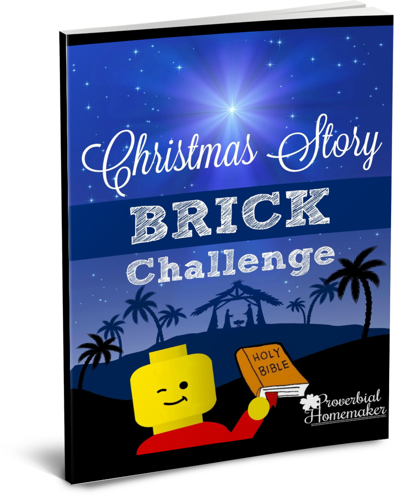 Christmas Brick Challenge & Learning Pack
