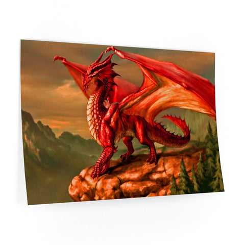 "MV Collection ""Red Dragon"" Wall Decals"