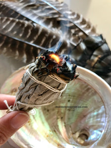 The Spirituality of Abalone Shells & Cleansing