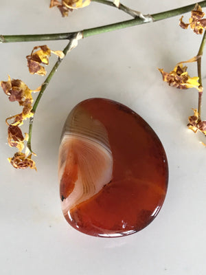 Madagascan Banded Agate