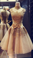 Fashion Appliqued Homecoming Dress , Short Prom Dress PDS0030