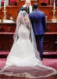 Mermaid Lace Wedding Dress With Long Sleeves , Fashion Bridal Dress BDS0804