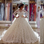 Popular Lace Ball Gown Wedding Dress , Fashion Bridal Dress BDS0256