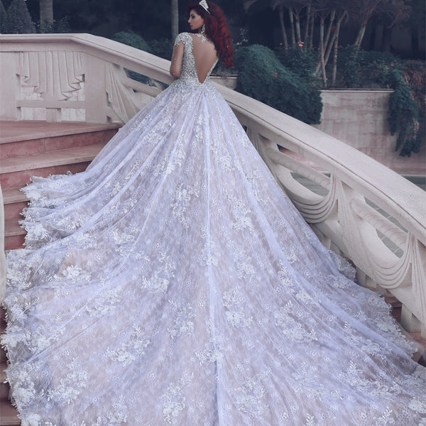 Fashion Lace Wedding Dress Ball Gown With Applique And Beading Bridal Dresses Ball Gown Wedding Dress With Long Sleeves Bds0099