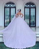 Popular Ball Gown Wedding Dress With Applique , Fashion Bridal Dress BDS0283