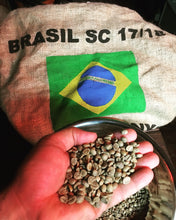 Micro-Roast Coffee Beans - Brazil Florada Fancy Cup