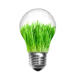 This photo is a lightbulb with grass growing inside of it. We use this image to represent News & Updates Blogs where you can learn all about our products, the green initiatives we support, as well as all the various other updates on what we are doing.