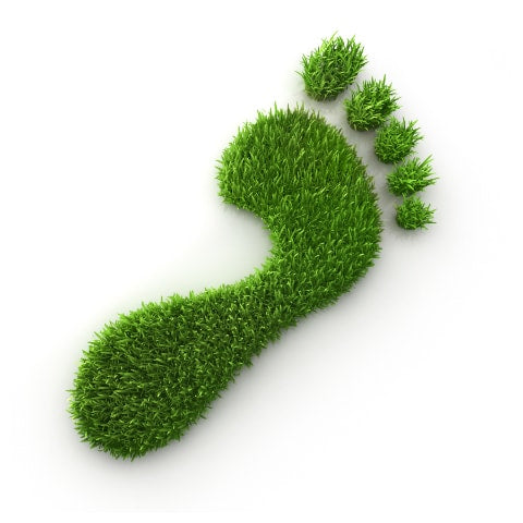 Earth friendly green footprint