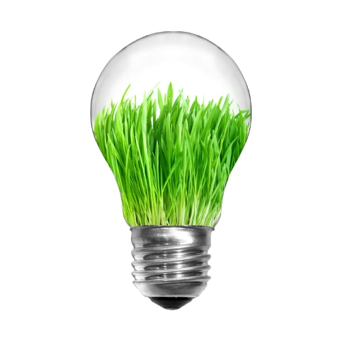 Green idea lightbulb